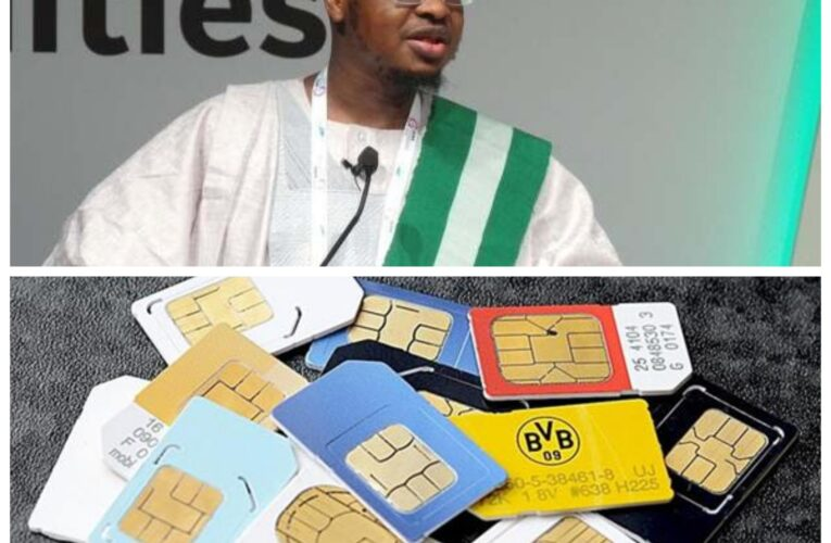 NIN To SIM Cards: Pantami Reveals How 7 SIM Cards Can Be Linked…