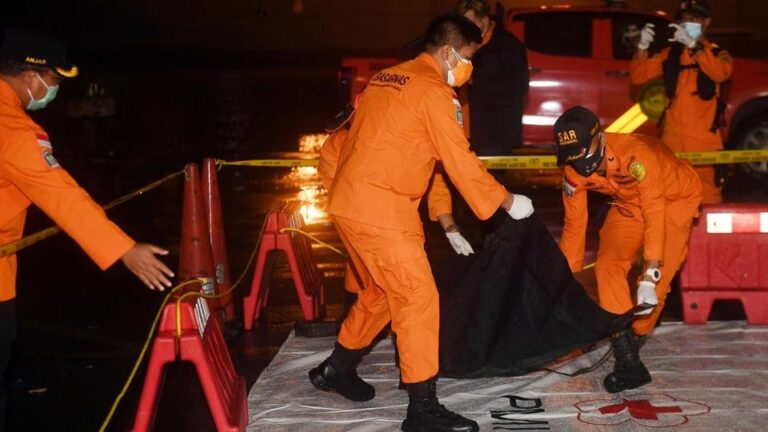 Indonesian divers find parts of plane wreckage in Java Sea…