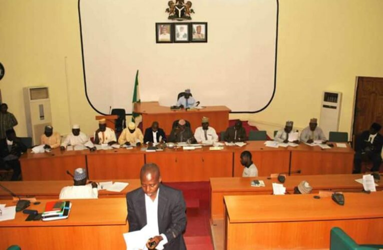 Lawmakers: Niger Govt cannot negotiate with bandits…
