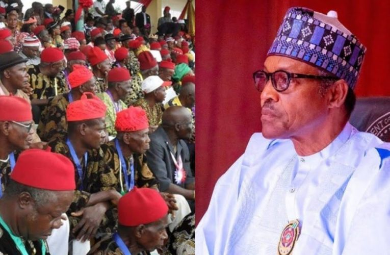 Ohanaeze Tackles Buhari, Reject President's New Security Plans For Southeast, South-South…