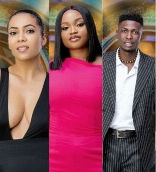 BBNaija: JMK, Sammie and Maria Becomes 6th, 7th and 8th Housemates to Be Evicted From Reality Show…
